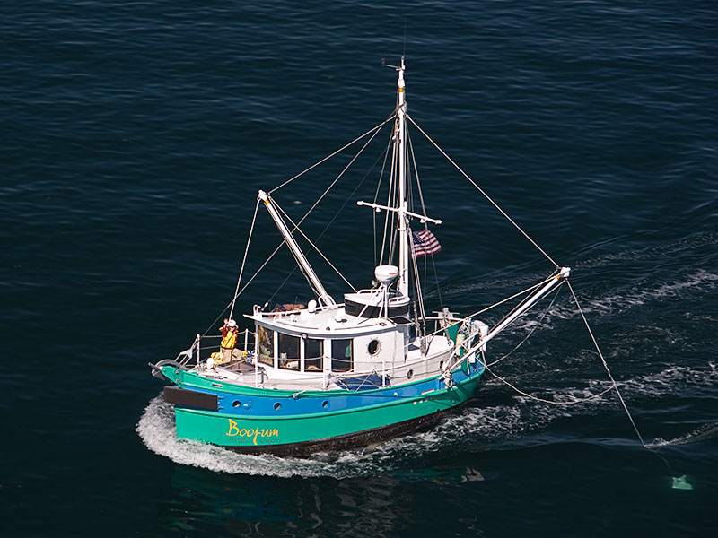 24' Tug Yacht - BOOJUM on Puget Sound, Washington.